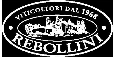 Rebollini Retina Logo